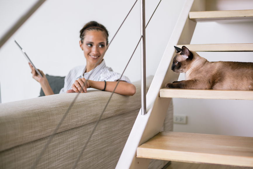 Woman sitting looking at cat
